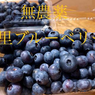美里ブルーベリー 1キロ(フルーツ)