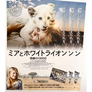 『ミアとホワイトライオン』映画 フライヤー チラシ 3枚(印刷物)