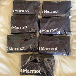 マーモット(MARMOT)のMonoMax2021年8月号マーモットお役立ポケット付2WAY保冷バックパック(バッグパック/リュック)