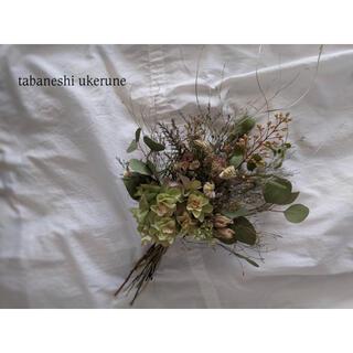 柏葉紫陽花とユーカリや夏の草花を束ねた 落ち着きのある スワッグ ドライフラワー(ドライフラワー)