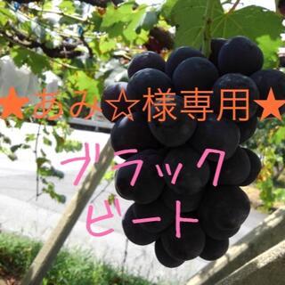 ★あみ☆様専用★ブラックビート(フルーツ)