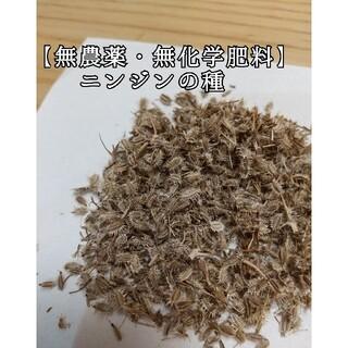 【無農薬・無化学肥料】五寸ニンジンの種(その他)
