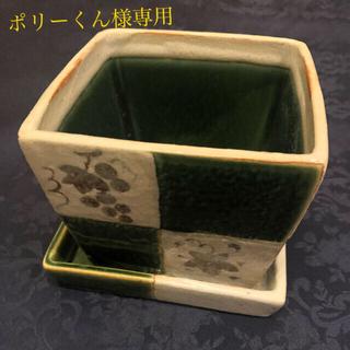 タチキチ(たち吉)の専用 たち吉 植木鉢 市松織部(プランター)