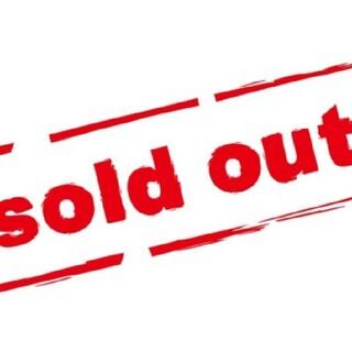 No.12 Chairひまわり(ドライフラワー)