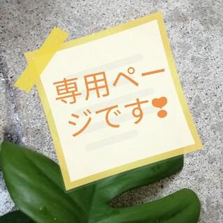 オレンジ様専用ページ❗柱サボテン鬼面角№97.98.99 3点(その他)