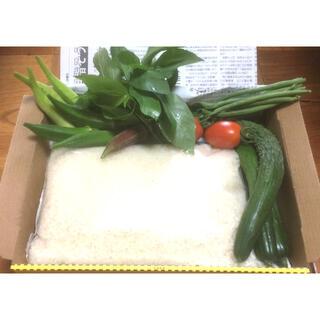 野菜詰め合わせ 米入り コンパクトBOX(野菜)