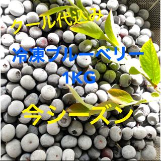 💝全国配送中完熟冷凍ブルーベリー 1KG クール冷凍送料込(フルーツ)