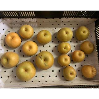 幸水梨、豊水梨 訳あり食べ比べ4.5キロ(フルーツ)