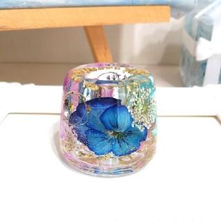 ★SALE★No.323 青&ピンク系ビオラin✨固まるハーバリウムペン立て(ドライフラワー)