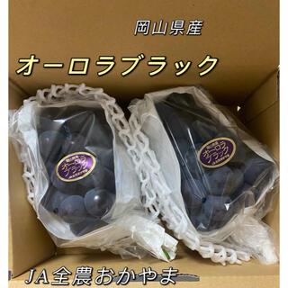オーロラブラック 岡山県産 2房 約1.2kg以上 JAおかやま ぶどう(フルーツ)