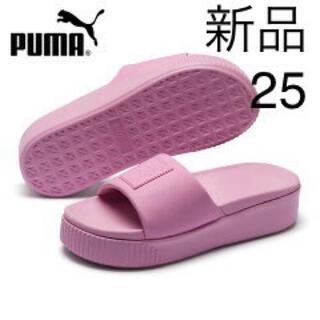 プーマ(PUMA)の新品25cm  プーマ PUMA レディースサンダル(サンダル)