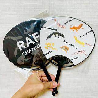 【たねん子さん専用】RAFちゃんねる団扇1枚(うちわ)