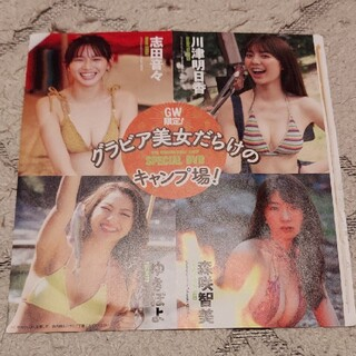 PLAYBOY - 週刊プレイボーイ特典DVD