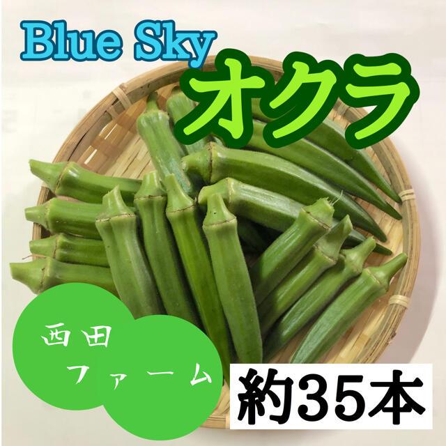 熊本県八代産 新鮮オクラ(ブルースカイ) 35本 食品/飲料/酒の食品(野菜)の商品写真