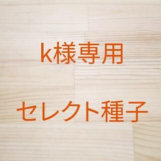k様専用 セレクト種子 2袋(野菜)