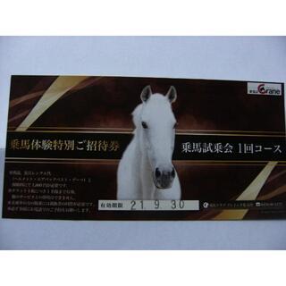 乗馬クラブ クレイン千葉 富里さんの乗馬体験特別ご招待券 乗馬試乗会 1回コース(その他)