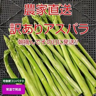 【訳あり】アスパラガス 700g 採りたて野菜(野菜)