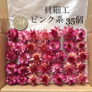 【niiii様専用】(25)(26)貝細工 ドライフラワー ピンク 白 (ドライフラワー)