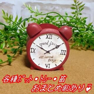 【ミニレジンポット:時計】多肉植物 寄せ植え プラ鉢 プレステラ(プランター)