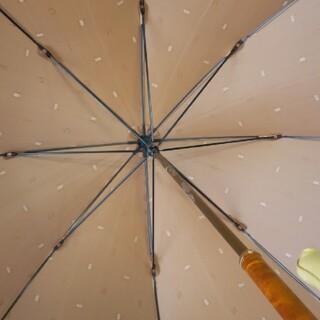 セリーヌ(celine)のセリーヌ傘難あり(傘)