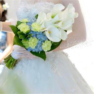タカミ(TAKAMI)のタカミブライダル ロングベール ショートグローブ(ヘッドドレス/ドレス)