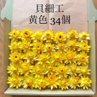(27)貝細工 ヘリクリサム ドライフラワー 黄色 34個(ドライフラワー)