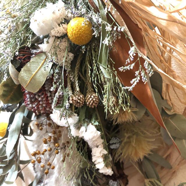ドライフラワー スワッグ ココシニア パンパス No.34 ハンドメイドのフラワー/ガーデン(ドライフラワー)の商品写真