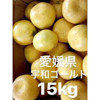 愛媛県 宇和ゴールド 河内晩柑 嵐ゴールド 15kg(フルーツ)