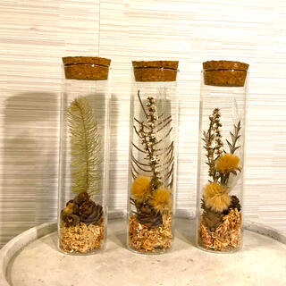 ドライフラワー アレンジメント ガラス瓶 3点セット(ドライフラワー)