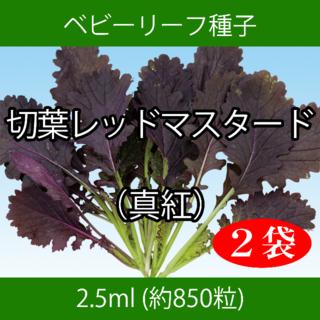 ベビーリーフ種子 B-49 切葉レッドマスタード(真紅) 2.5mlx2袋(野菜)
