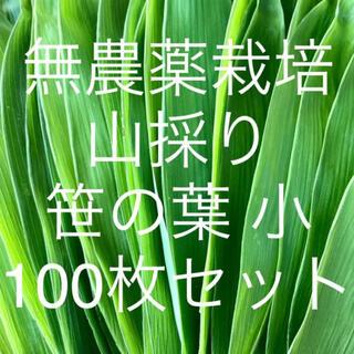 無農薬栽培 山採り 笹の葉 小サイズ 100枚セット(野菜)