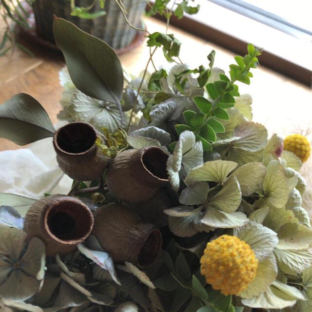 スワッグ✳︎紫陽花✳︎爽やかスワッグ ハンドメイドのフラワー/ガーデン(ドライフラワー)の商品写真