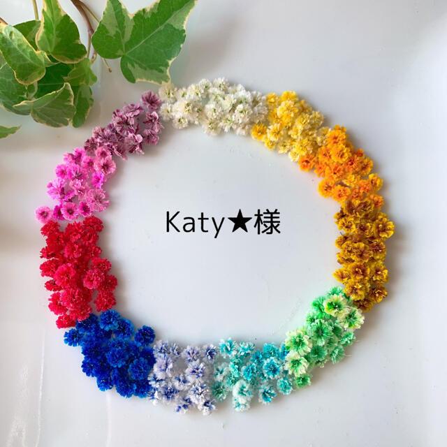 Katy★様専用ページ ハンドメイドのフラワー/ガーデン(ドライフラワー)の商品写真