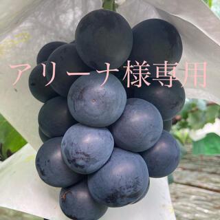 アリーナ様専用  山梨県産ブラックビート2kg(フルーツ)