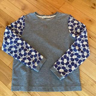 ビューティアンドユースユナイテッドアローズ(BEAUTY&YOUTH UNITED ARROWS)のアローズ 袖レース切り替えプルオーバー(Tシャツ/カットソー)
