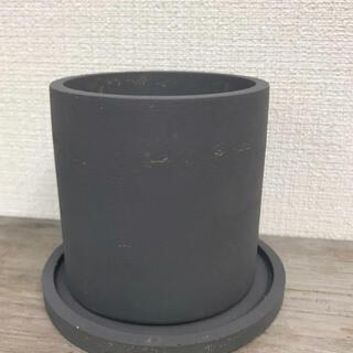オシャレ セメント鉢グレー アンティーク風  (プランター)