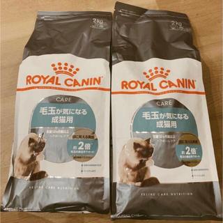 ロイヤルカナン(ROYAL CANIN)の★早い者勝ち!【即購入OK】新品 ロイヤルカナン ヘアボールケア猫用2kg×2袋(ペットフード)