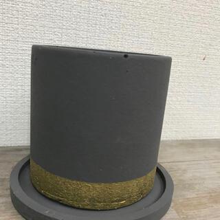 オシャレ セメント鉢グレーゴールドライン(プランター)