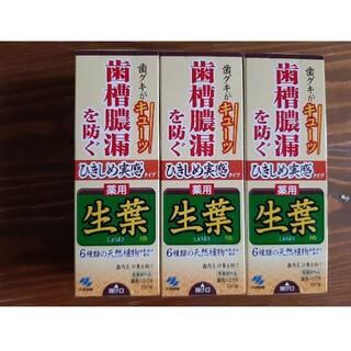 コバヤシセイヤク(小林製薬)の生葉 ひきしめ実感タイプ 歯槽膿漏を防ぐ100g×3箱セット(歯磨き粉)