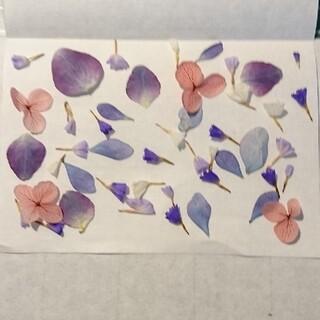 小花セット   ドライフラワー 紫系(ドライフラワー)