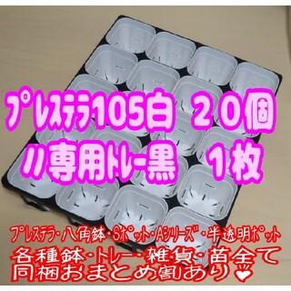 【スリット鉢】プレステラ105白20個+専用システムトレー黒1枚 プラ鉢多肉植物(プランター)