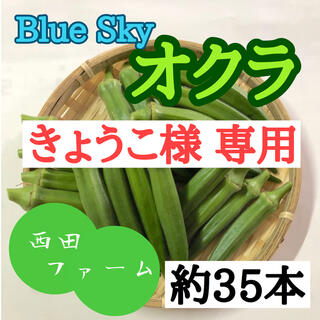 熊本県八代産 新鮮オクラ(ブルースカイ) 35本(野菜)