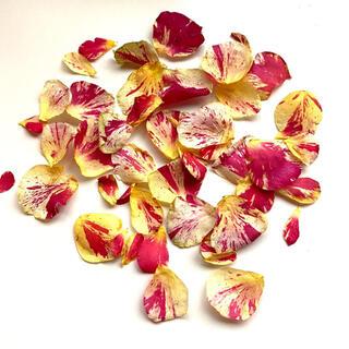 【小さなドライフラワー】バラの花びら マーブル(ドライフラワー)
