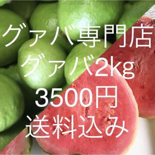 21 グァバ 2kg 3500円(常温郵送)(フルーツ)