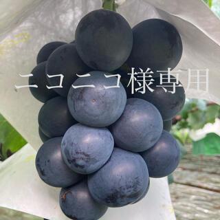ニコニコ様専用  山梨県産ブラックビート2kg(フルーツ)