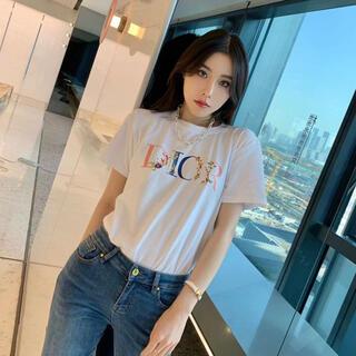 ディオール(Dior)のdior半袖Tシャツ(Tシャツ(半袖/袖なし))