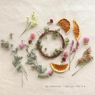 dry botanical /  #3 ドライフラワー 花材  ハンドメイド(ドライフラワー)