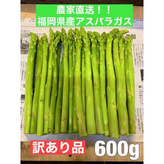 【クロタンママ様専用】福岡県産アスパラガス600g(訳あり品)(野菜)