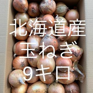 北海道産玉ねぎ 9キロ(野菜)