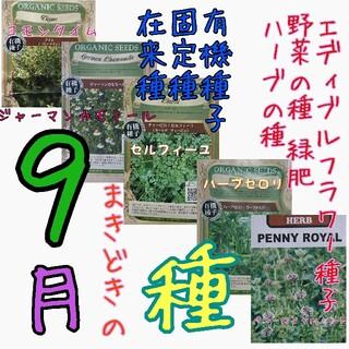 9月まきどきの種 固定種 在来種 有機種子 野菜の種 ハーブの種 緑肥 種子 種(野菜)